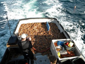 crab dec 2009 deck load 012